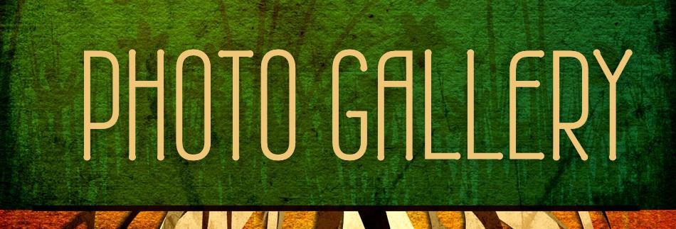 Green Growth Website Banner